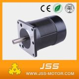 Wholesale Price 24V 4000rpm Brushless DC Motor in China