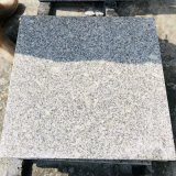 Granite tile and slabs catalog