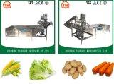 Automacti Continous Fruit Washing Machine Cucumber Washer Vegetable Washing Machine