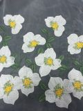 New Design Embroidery Lace Fabric for Dress