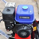 Ce Approval Resort Push Type Mini Lawn Mower