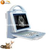 Sun-800W Cheap Dp-10 Similar Veterinary Ultrasound, Portable Ultrasound Machine Price for Vet