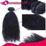Wholesale Price 100% Virgin Hair Kinky Curly Weft Brazilian Hair