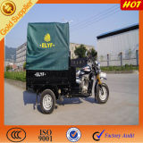 Cheap Price for Three Wheeled Motorcycle with Canopy