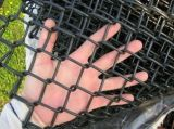 Amazon Ebay's Choice Mesh 50X50mm PVC Coated or Galvanized Chain Link Fence (CLF)