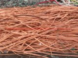 Hot Sale Best Price Metal Copper Scrap Wire