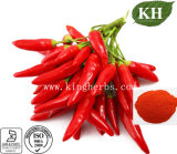 Red Pepper Extract Paprika Extract Capsaicinoids