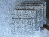 Chinese Cheap New Grey Granite China Rosa Porrino Tile for Paving Stone