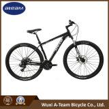 29er 24 Speed Mountain Bicycle (MTB10)
