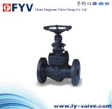API 602 Forged Steel Globe Valve F304 F316