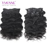 Yvonne Wholesales Price Body Wave Virgin Brazilian Human Clip in Hair Extensions