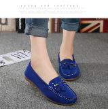 Hot Sale Women Dance Shoes Dress Shoes Leisure Shoes (FTS1019-25)
