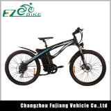 City E-Bike Electric Bicycle with Lithium Battery 250W 500W