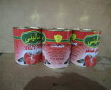 Hot Selling Excellent Quality 3000g Tin Canned Tomato Paste