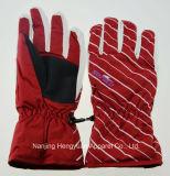 Women Moto Golve Work Glove Bike Glove Winter Glove Ski Glove (HY17082506)