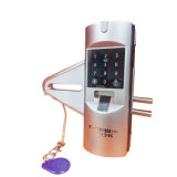 Electronic Digital and Fingerprint and Password Glass Door Lock