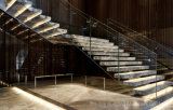 Modern Staircase with Marble Steps Mono Stringer Glass Railing / Luxury Stairs Design