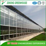 high Quality Hot-DIP Galvanized Steel Frame Glass Greenhouse for Indoor Swimming/Pigeon Raising/Fruits/Botanical Garden