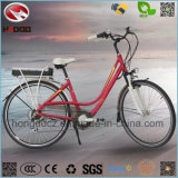 New 250W Entry Level Ciry E-Bike Upgrading Road Bicycle