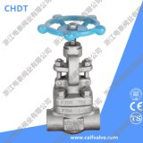 A182 F304 800lb DN15 Manual Globe Valve with Socket Welding End