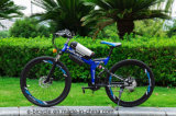 mountian e-bicycle