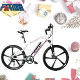 Fantas-Bike City Hunter001 Children Bicycle