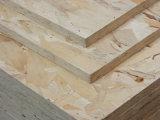 Marine OSB Plywood Board Manufacturer