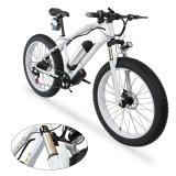 2021 New Style 350W/500W /1000W Customized Brushless Motor Mountain Fat Tire Electric Bikes