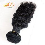 100% Cambodian Remy Hair Curly Thangle Free High Quality Weft Hair Extension