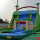 Giant Inflatable Slide with Pool for Children