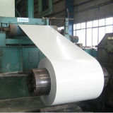 PPGI / Pre-Painted Galvanized Steel Sheet in Coil (0.125-1.3mm)