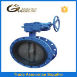 Pn16 Cast Iron Butterfly Valve