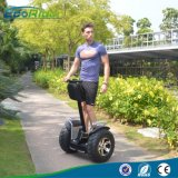 Ecorider Two Wheel Electric Chariot Scooter Self Balancing Scooter 4000W
