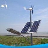 Cheap IP65 Outdoor 70W Wind Generator LED Solar Street Lamp