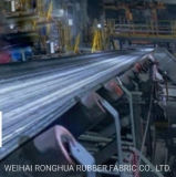 Industrial Polyester Ep Conveyor Belt (EP100-600) with Top Quality
