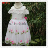 High Quality Embroider Tulle Dress for Baby Girls Kids Clothes for MID East