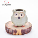 Ceramic Cartoon Owl Planter Porcelain Animal Flowerpot / E