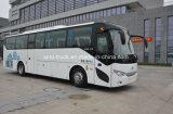 Long Distance Bus//Cheap Diesel City Bus