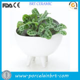 Fancy China Ceramic Garden Flower Pot with Footstand