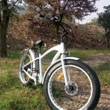 500W Fat Tire Electric Bicycles with Alloy Frame