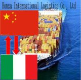 Fast &Cheap& Reliable China Sea Freight Logistics Agent to Italy