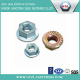Zinc Plated Flange Nuts (DIN6923)