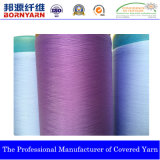 Single Covered Yarn with The Spec 1130/10f (S/Z)