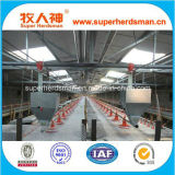 Automatic Poultry Farming Equipment for Broilers and Chickens