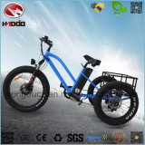 China Wholesale 3 Wheel Electric Tricycle with Fat Tire