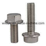 Stainless Steel Hex Head Hexagon Flange Bolt