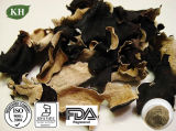 Black Wood Ear Extract Polysaccharides 20% by UV