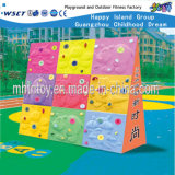 Kids Outdoor Play Equipment Climbing Playground (HF-19308)