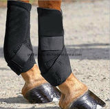 Horse Hoof Care Leg Brace Harness Equestrian Produts
