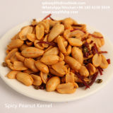 Roasted Peanuts Fried Spicy Peanut Snack Price